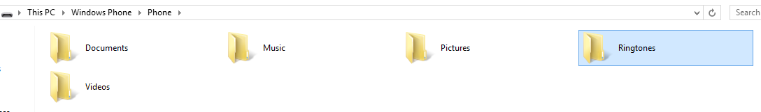 file_manager_window_WP8